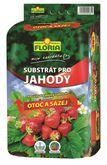 Substrát na jahody 40 L Floria