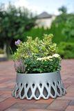 Samozavlažovací kvetináč ROSETA 40BR