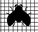 siete proti hmyzu